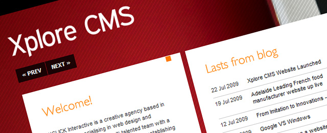 Dynamic, great website design for company