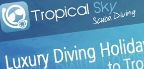 Diving Holidays image