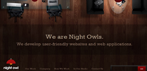 NIght Owl Interactive | A Web Development Company image