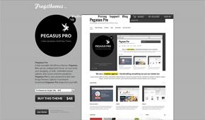 Pegasus Pro image