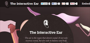 1367010466 Interactive Ear tool The Interactive Ear